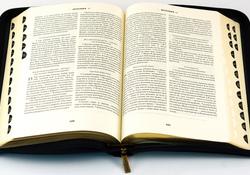 «Священное Писание» - конференция Российского богословского общества